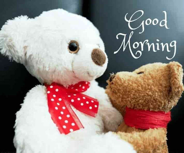 Good Morming Teddy Bear