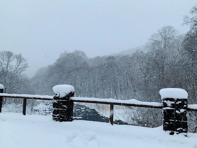 奧入瀨溪畔雪景