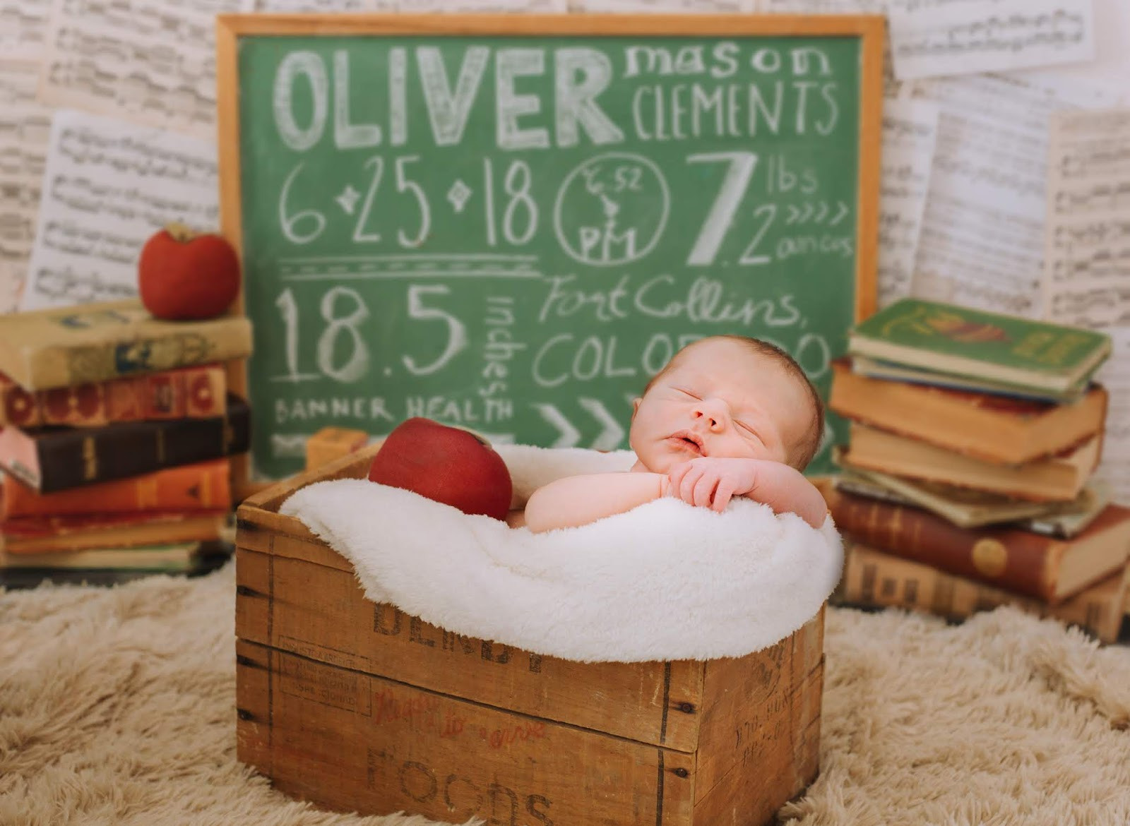 fremont newborn photographer
