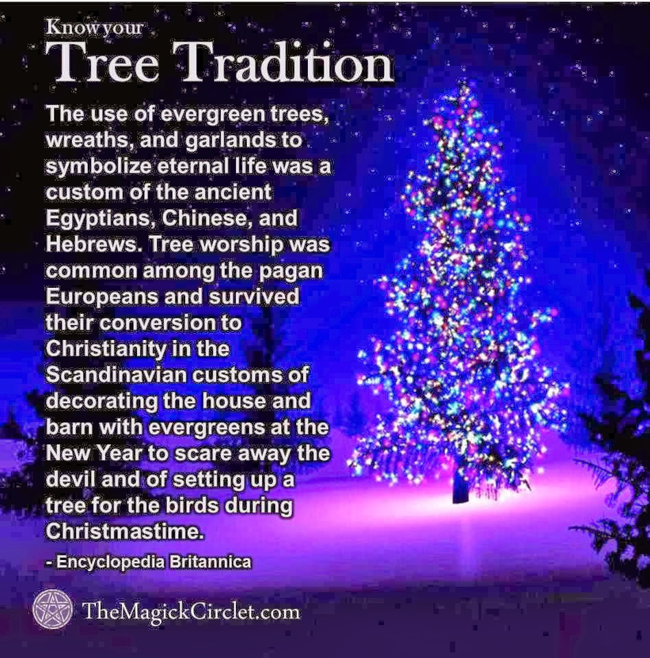 https://i1.wp.com/1.bp.blogspot.com/-f2oUHj-JFmY/UrmHithkBrI/AAAAAAAABk0/kNdf84bxoJk/s1600/tree.jpeg