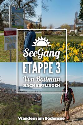 SeeGang Etappe 3 - Riedwiesen und Steiluferlandschaften am Überlinger See: Von Bodman durchs Aachried nach Ludwigshafen und auf dem Blütenweg nach Sipplingen 20