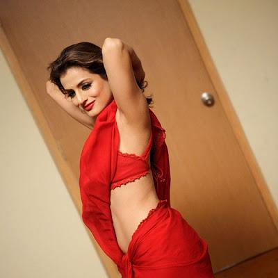 Amisha Patel Saree Hot