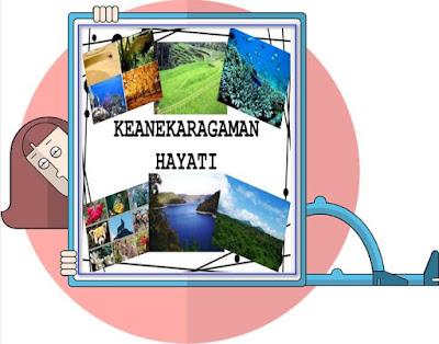 Fungsi Dan Manfaat Keanekaragaman Hayati Di Indonesia