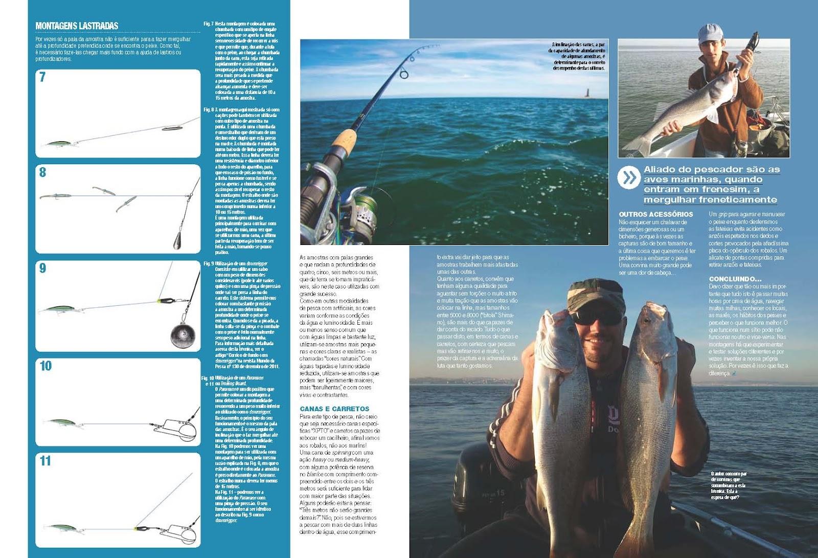 Revista Mundo Da Pesca Pdf