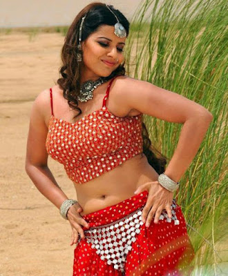 Madhu Sharma new image