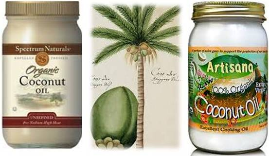 Coconut Oil In Cats Food Help Skin Issues