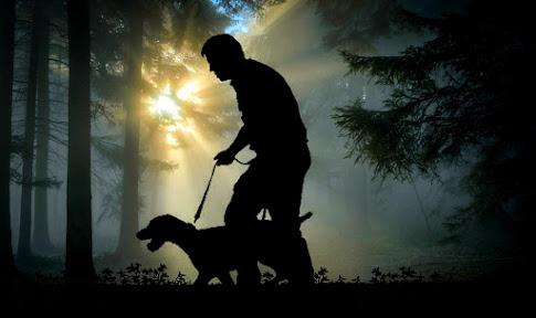 Melatih anjing kampung berburu