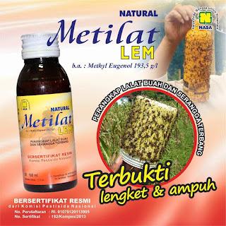 harga obat metilat lem untuk lalat buah tips bahan membuat lem lalat metilat nasa metilat methylergometrine maleate membuat lem lalat sendiri metilat tablet pentana nasa