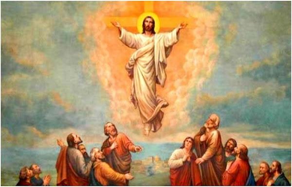 Kenaikan Tuhan Yesus Kristus, Kenaikan Yesus Kristus, Bacaan Injil Kenaikan Tuhan, Renungan Harian Katolik, Renungan Katolik, Renungan Hari ini Katolik, Renungan Harian Katolik Hari ini, Renungan Bacaan Injil, Renungan Katolik Hari ini, Aplikasi Renungan Harian Katolik, Renungan Harian Katolik Fresh Juice, Renungan Doa Pagi Katolik, Renungan Harian iman katolik Hari ini, Renungan Iman Katolik, Renungan Rohani Katolik, Renungan Bacaan Alkitab, Renungan Kristen Hari ini, Renungan Harian Kristen, Renungan Pagi, Renungan Malam, Renungan Harian Air Hidup, Renungan Liturgi Hari ini, Renungan Bacaan Liturgi, Renungan Singkat Kristen, Renungan Singkat Katolik, Renungan Kaum Ibu, Renungan Katolik Injil Yohanes, Renungan Katolik Injil Matius, Renungan Katolik Injil Lukas, Renungan Katolik Injil Markus, Renungan Ziarah Batin, Renungan Katolik Ruah, Renungan Bahasa Kasih, Renungan Harian Sesawi, Renungan Katolik Syukur Kelahiran Anak, Renungan Harian Kristen Singkat, Renungan Harian Katolik Online, Renungan Harian Saat Teduh, Renungan Harian Inspirasi Batin, Renungan Harian Lentera Jiwa, Renungan Harian Bahasa Inggris, Renungan Fresh Juice, Renungan Harian Fresh Juice, Renungan Injil Hari ini, Renungan Harian Keluarga, Renungan Harian Katolik Audio, Renungan Doa Katolik, Doa Renungan Harian Katolik, Renungan Gereja Katolik Hari ini, Katolik Roma, Bacaan Injil Katolik, Injil Harian Katolik, Liturgi, Bacaan Liturgi, Kalender Gereja Katolik, Renungan Katolik Hari ini, Download Renungan Harian Katolik, Khotbah Katolik Hari ini, Renungan Pagi Katolik, Renungan Harian Kristen Pemuda, Renungan Harian Kristen tentang Pernikahan, Renungan Harian Pelita Hidup, Bacaan Hari ini Iman Katolik, Renungan Harian Katolik Senin, Renungan Harian Katolik Selasa, Renungan Harian Katolik Rabu, Renungan Harian Katolik Kamis, Renungan Harian Katolik Jumat, Renungan Harian Katolik Sabtu, Renungan Harian Katolik Minggu, Bacaan Harian Katolik, Bacaan Misa Katolik Hari ini, Bacaan Injil Katolik Hari ini, I