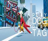 play-dog-play-tag