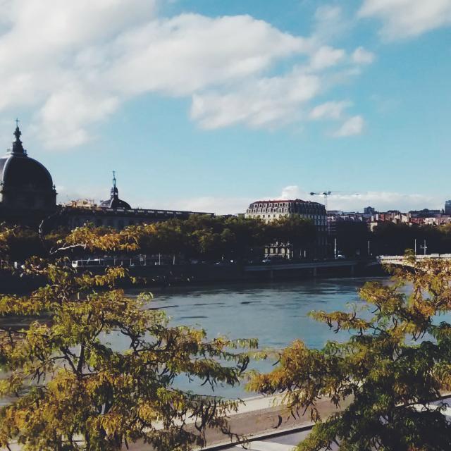 Vistas del Ródano desde el Puente de la Guillotière