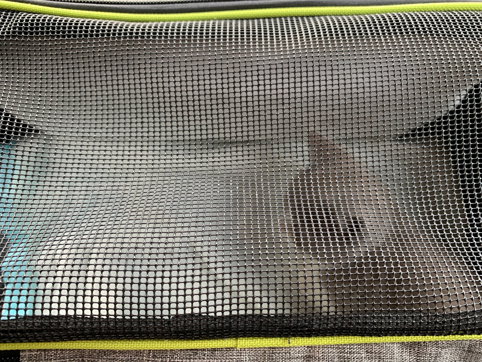 Préparer l'arrivée d'un chaton, les petites bulles de ma vie, lifestyle