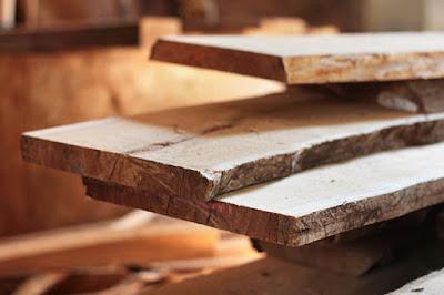 15 Jenis Kayu yang Sering Dimanfaatkan Dalam Pembuatan Mebel dan Furniture