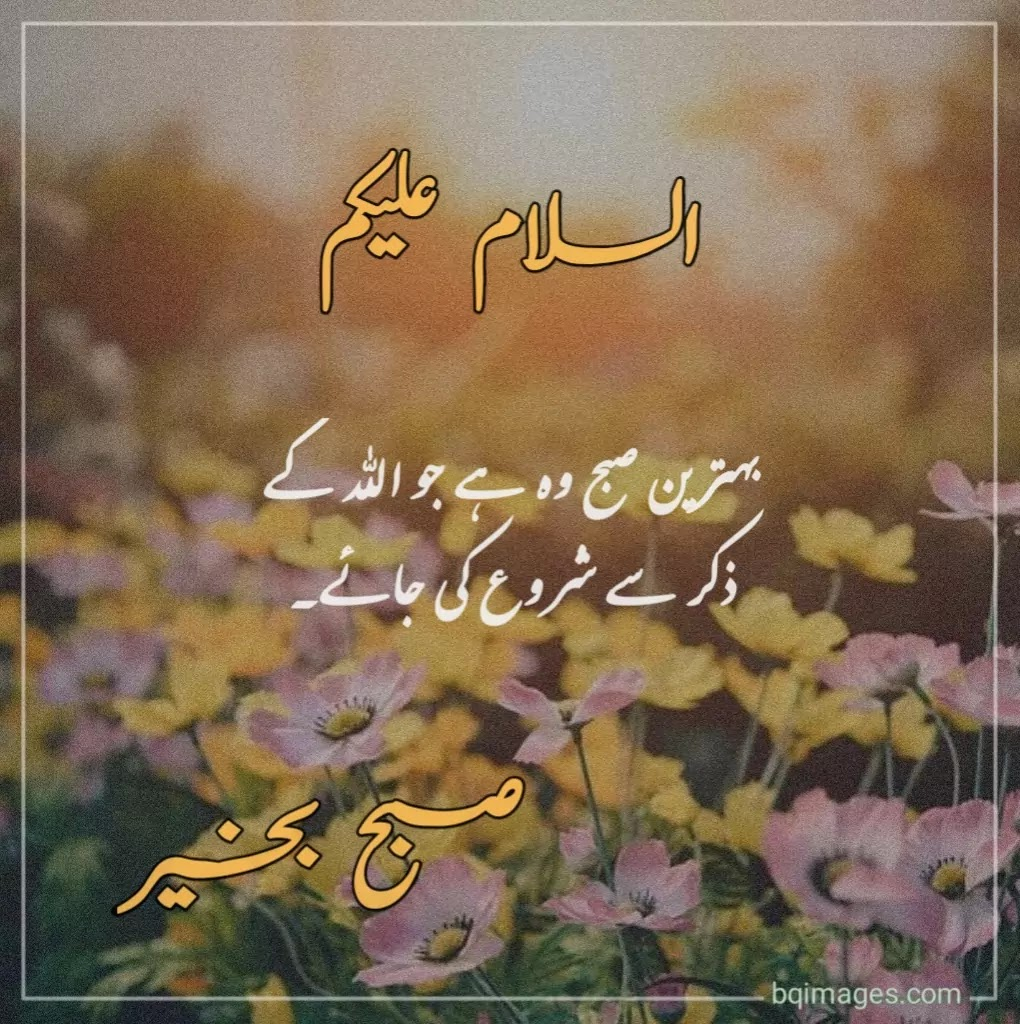 20+] Beautiful Good Morning Wishes, Dua In Urdu Images   bqimages ...