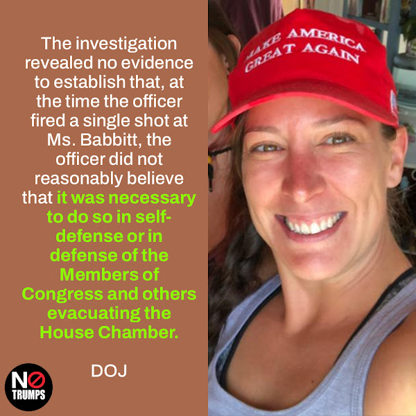 The investigation revealed no evidence to establish that, at the time the officer fired a single shot at Ms. Babbitt, the officer did not reasonably believe that it was necessary to do so in self-defense or in defense of the Members of Congress and others evacuating the House Chamber. — DOJ