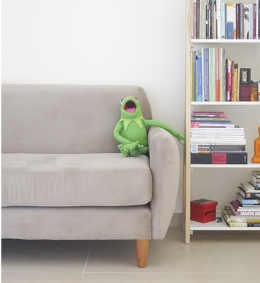 Kermit the frog toy sitting on a sofa with a book case to the right of it