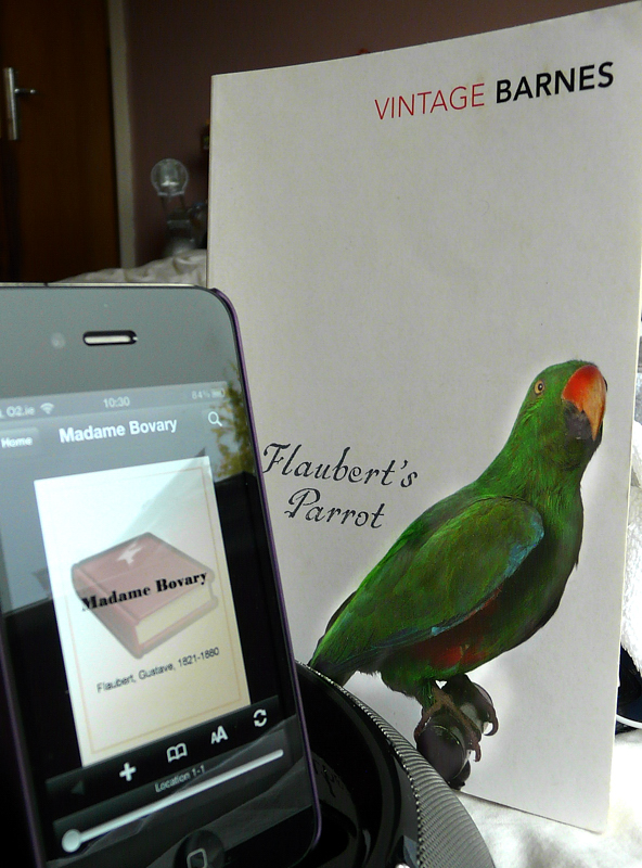 an analysis of flaubert s parrot by Buy a cheap copy of flaubert's parrot book by julian barnes just what sort of book is flaubert's parrot, anyway  both are lonely, prone to self-analysis and are.