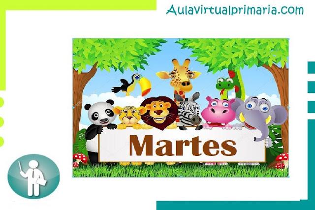 material, didactico , primaria, preescolar