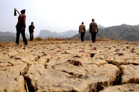 Oroszország élelmiszersegélyt küld a szárazság sújtotta Észak-Koreának
