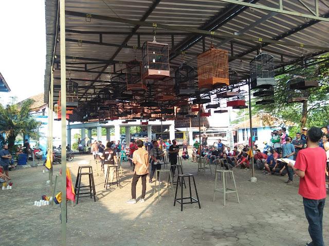 Launching Gantangan Terminal Manuk Di Randudongkal Dongkrak Ekonimi Warga