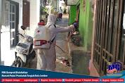 PMI Semprot Disinfektan Rumah Padat Penduduk Tengah Kota Jember