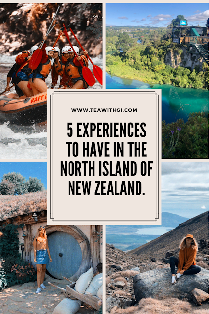 what to do north island new zealand