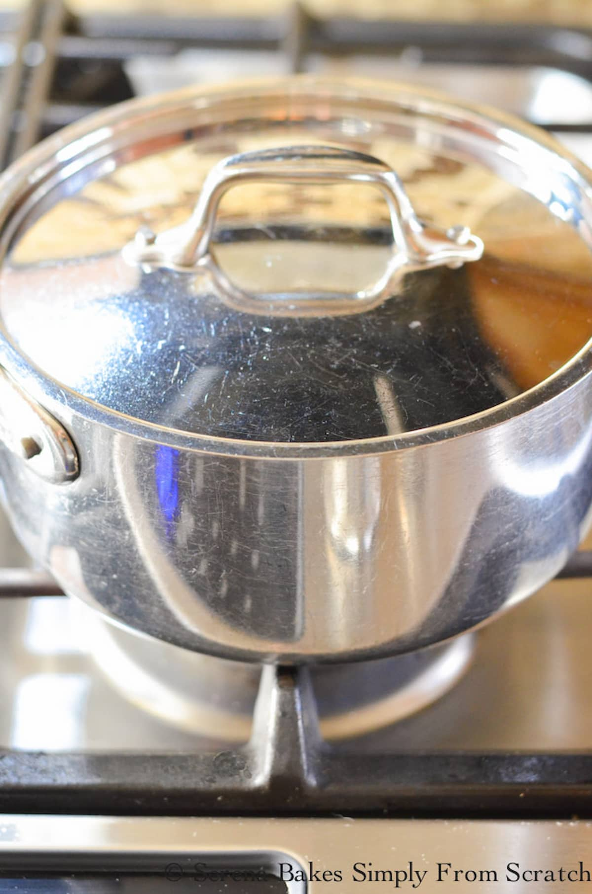 A stainless steel pot covered with a lid on a gas stove top.