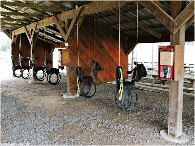 Cider Hill Farm: Columpio de Caballo