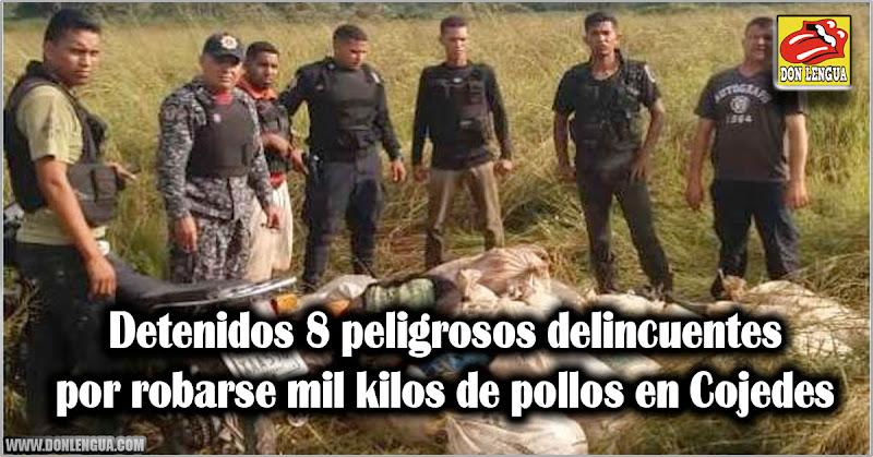 Detenidos 8 peligrosos delincuentes por robarse mil kilos de pollos en Cojedes