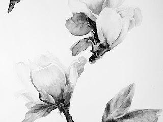 Akvarel uzor magnoliya | Inna Yakusheva's blog