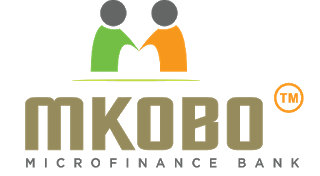 Apply for job Backend Developer at Mkobo Microfinance Bank