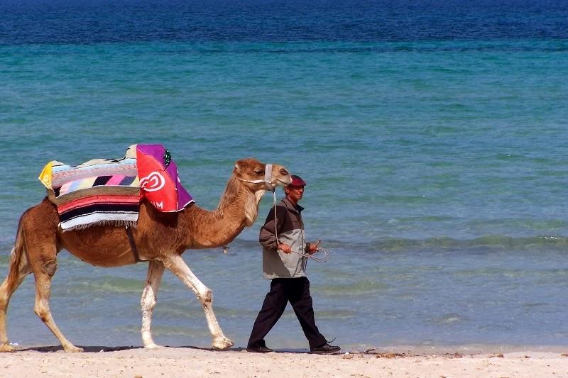 Objazdówka po Tunezji 2009