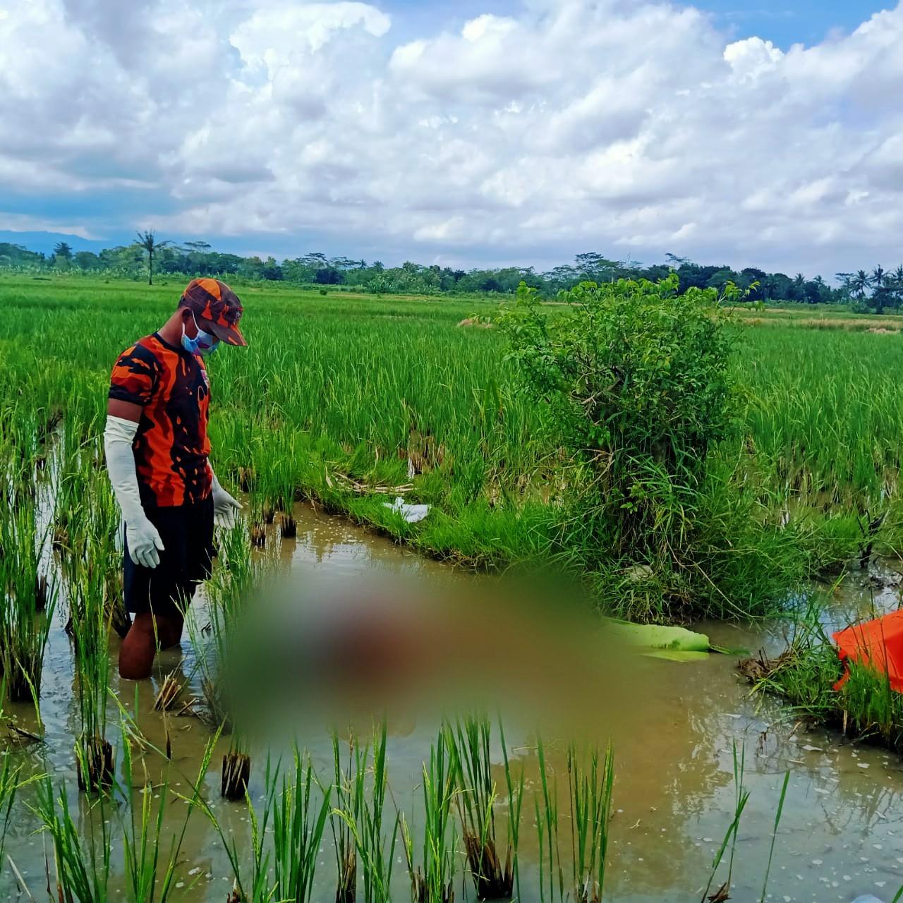 Innalillahi, Warga Mirit Ditemukan Meninggal di Pematang Sawah