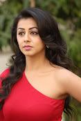 Nikki galarani latest sizzling pics-thumbnail-4