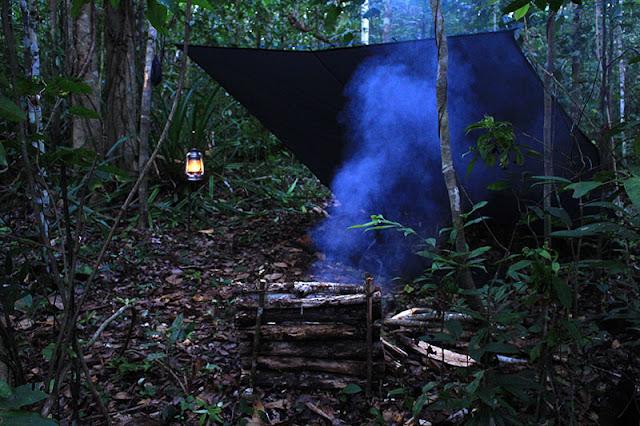 Solo Bushcraft di Hutan: Kegiatan yang Mengasyikkan di Alam Bebas