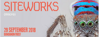 Siteworks banner with small colourful spider