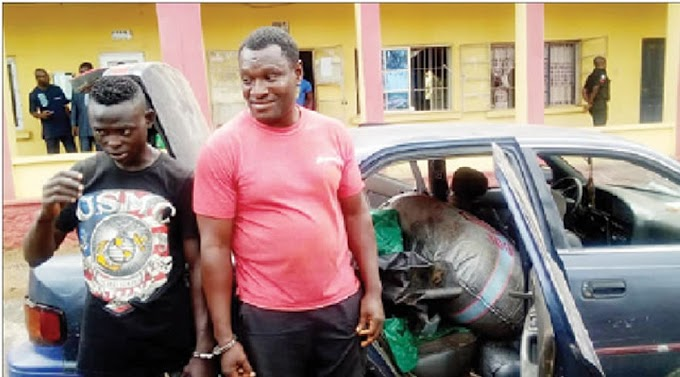 Police apprehend two pipeline vandals in Ogun