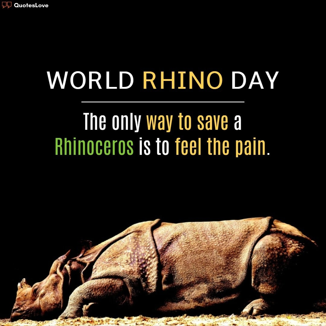 World Rhino Day 2020 Quotes, Slogans, Wishes, Facts, Images, Poster