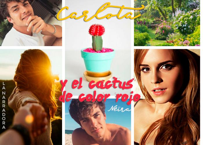 carlota-cactus-color-rojo