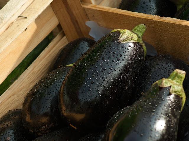 Astonishing Health Benefits of Eggplants - RictasBlog