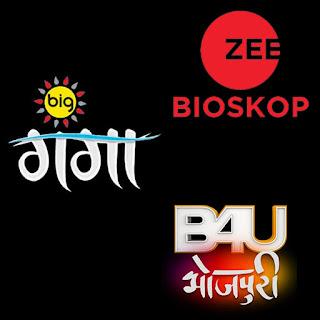 List Of Bhojpuri TV Channels, Bhojpuri Language All Television Channels
