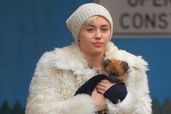 New dog comforted Miley Cyrus after the death of Floyd