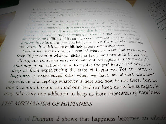 an except from a book on consciousness
