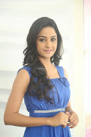 Divya Nandini stunning Beauty in blue Dress at Trendz Exhibition Launch ~  Celebrities Galleries 033.JPG