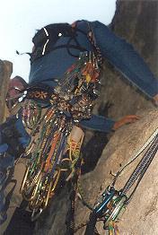 La Festa del Paca al Picu Urriellu