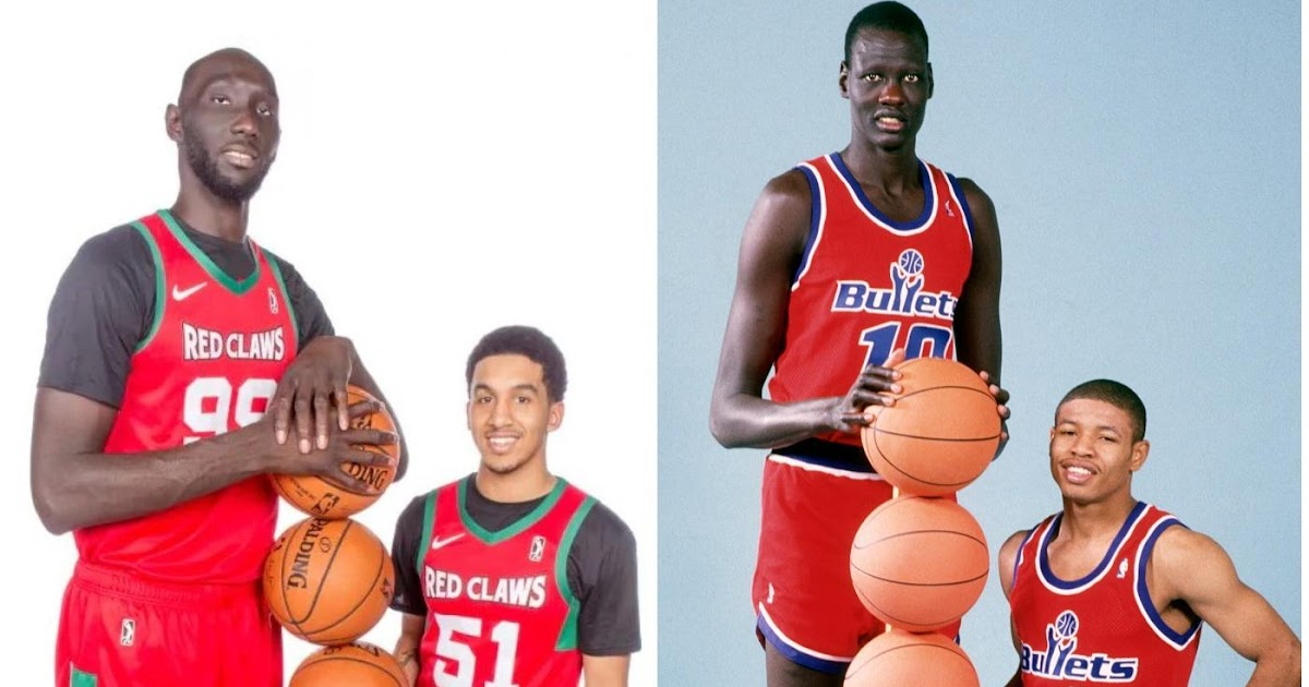 Do you need more Tacko Fall? Your answers lie within