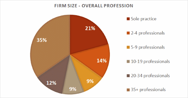 Firm size - profession