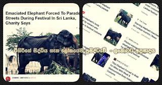 Tikiri's incident takes full coverage the world over -- humiliation to Sri Lanka