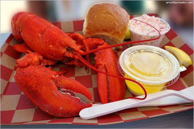 Gastronomía Tradicional de Nueva Inglaterra: Langosta