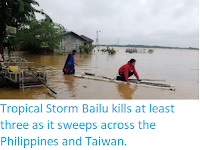 https://sciencythoughts.blogspot.com/2019/08/tropical-storm-bailu-kills-at-least.html